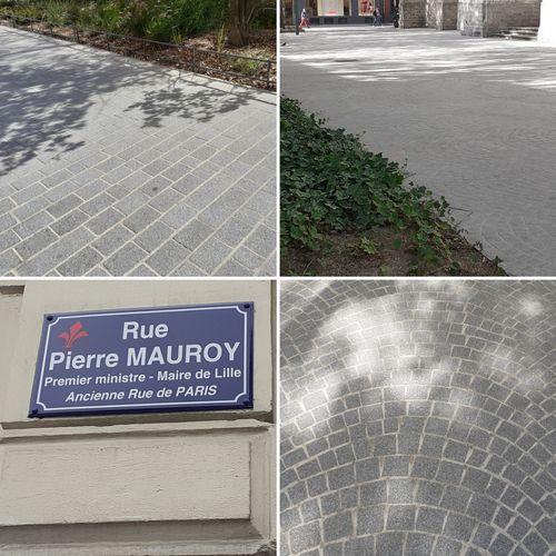 Aménagement de la rue Pierre Mauroy à Lille (59) en cours